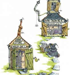 Individual Illustrations