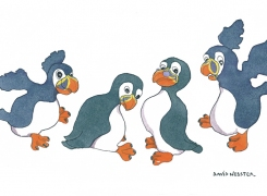 just_four_puffins